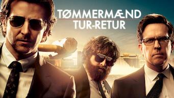 Tømmermænd tur-retur (2013)