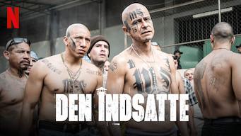 Den indsatte (2018)