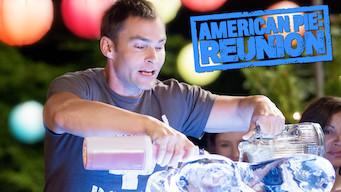 American Pie: Reunion (2012)